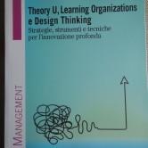 """Finalmente in uscita, per FrancoAngeli Edizioni! """"Theory U, Learning Organizations, Design Thinking. Strategie, strumenti e tecniche per l'innovazione profonda"""" di Rino Panetti"""