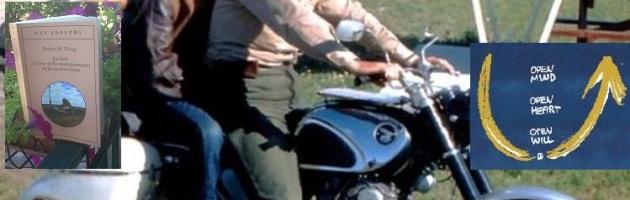 Theory U, una motocicletta, lo Zen… Dallo scaffale della libreria, improvvisamente semi di Theory U…